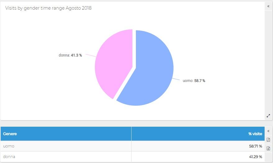 Report ShinyStat - Socio-Demo - Visite per genere
